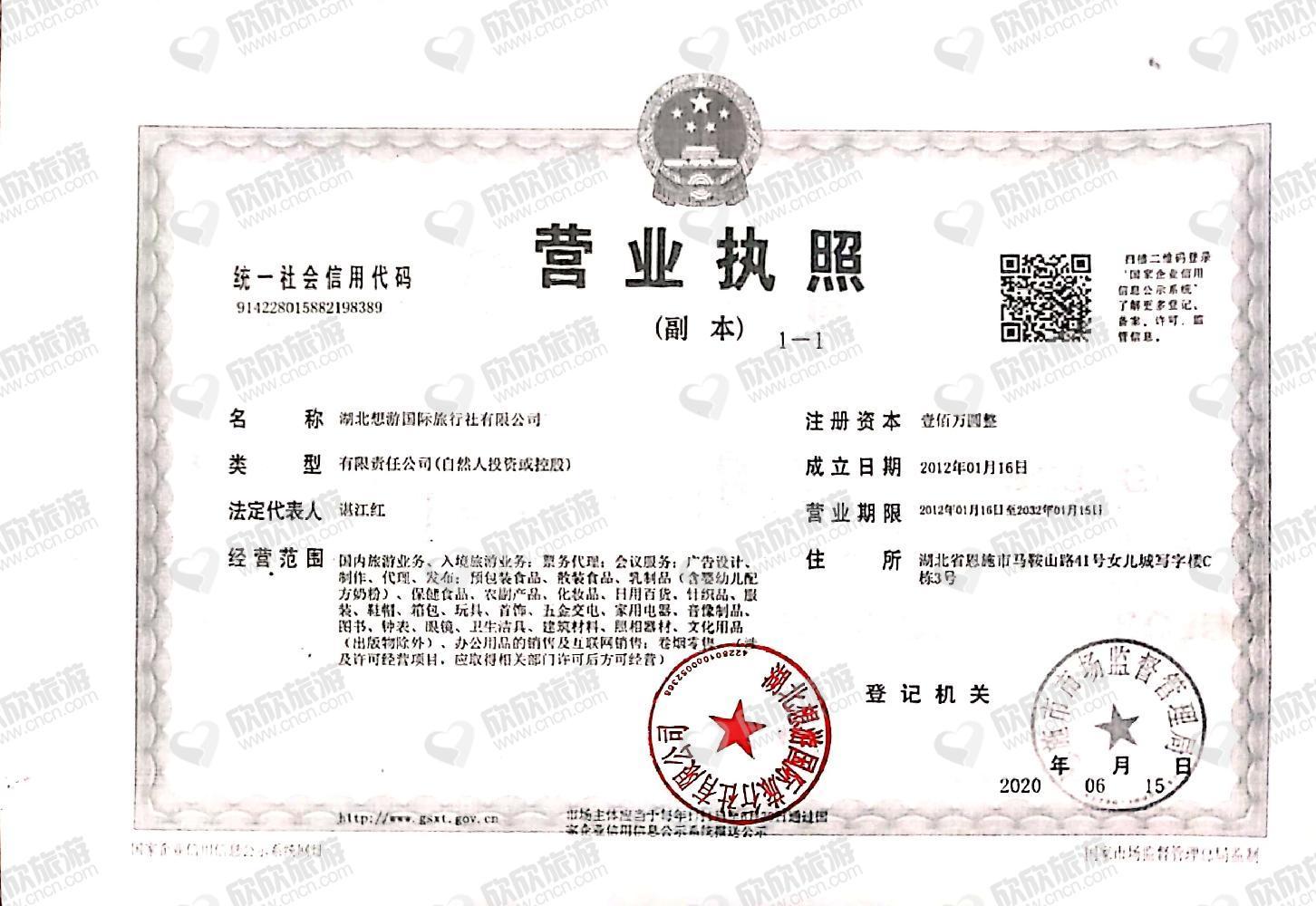 湖北想游国际旅行社有限公司营业执照