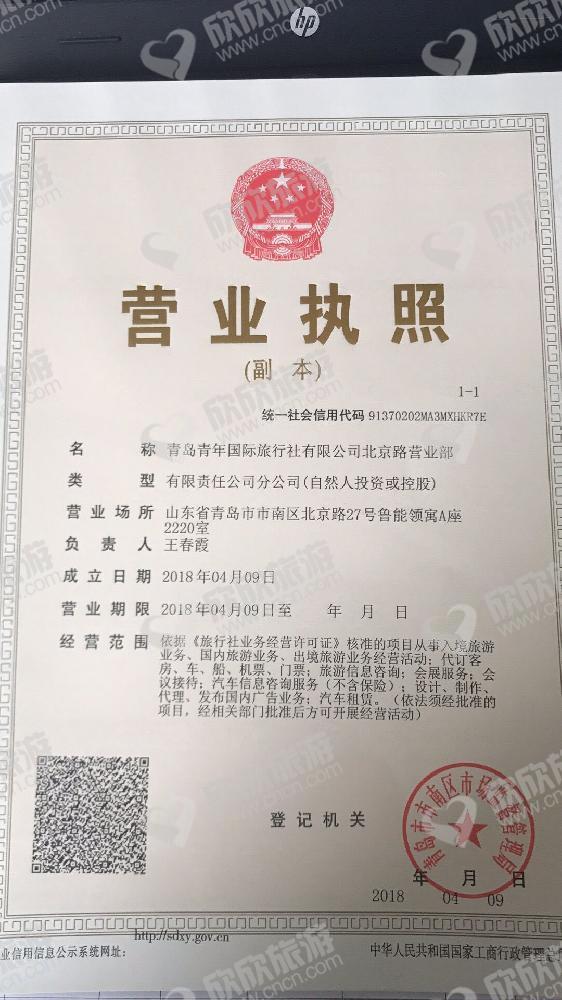 青岛青年国际旅行社有限公司北京路营业部营业执照