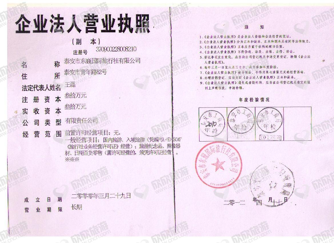 泰安市东巍国际旅行社有限公司【综合部】营业执照