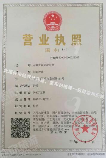 云南省国际旅行社营业执照