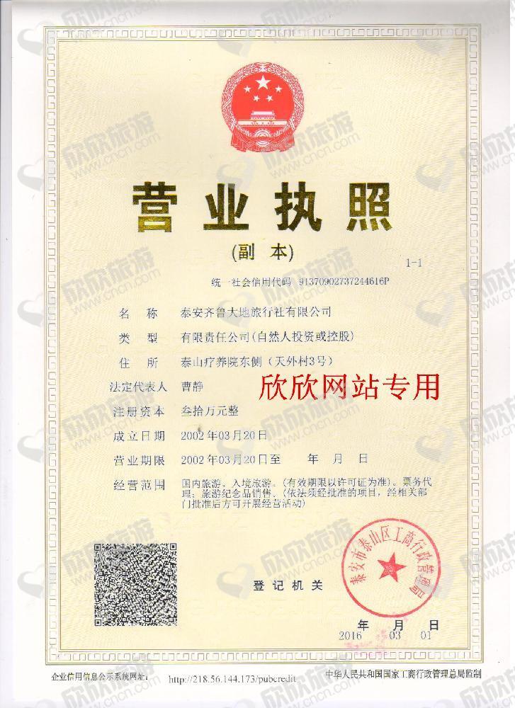 泰安齐鲁大地旅行社有限公司营业执照