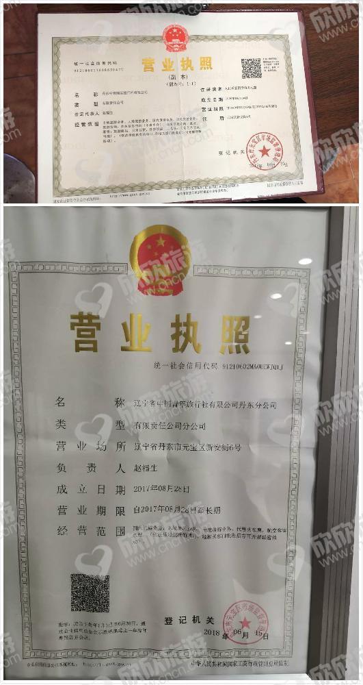 丹东中青国际旅行社有限公司营业执照