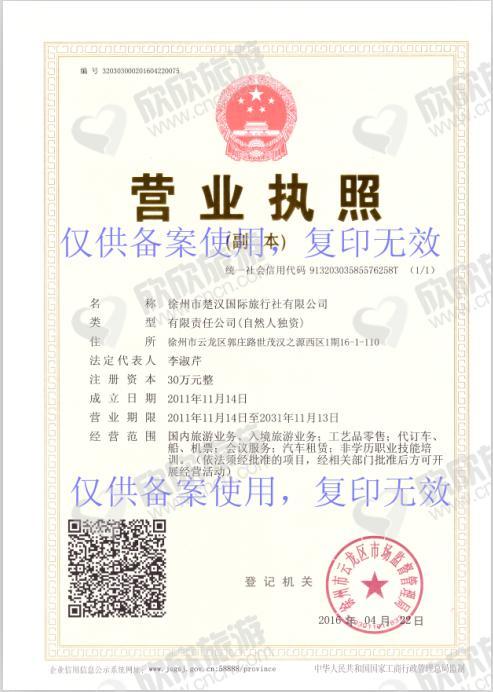 徐州市楚汉国际旅行社有限公司营业执照