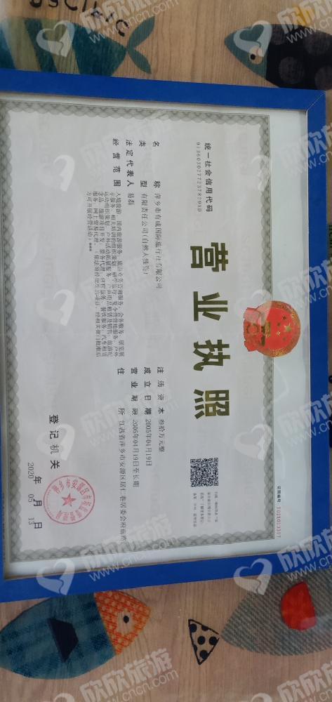 萍乡市有成国际旅行社有限公司营业执照