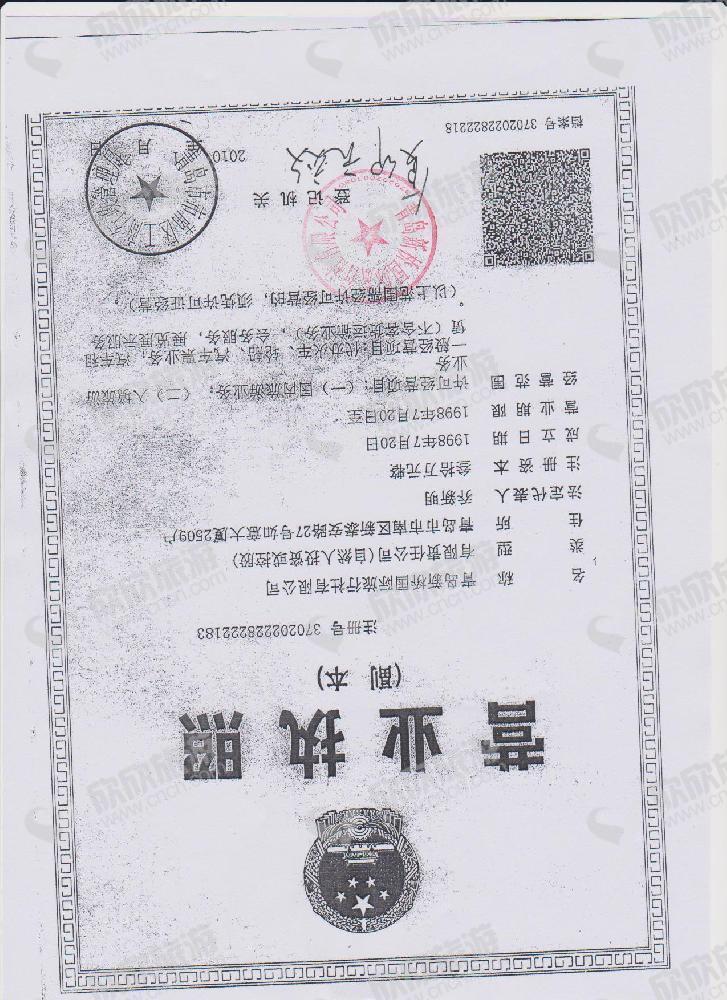 青岛新桥国际旅行社有限公司营业执照