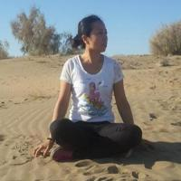 新疆中国旅行社常青藤